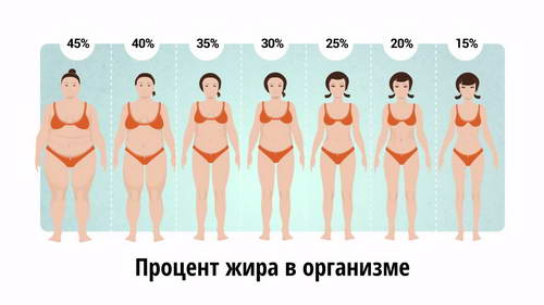 Можно ли похудеть навсегда. Как похудеть навсегда. Как похудеть.